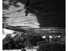 Photograph 5